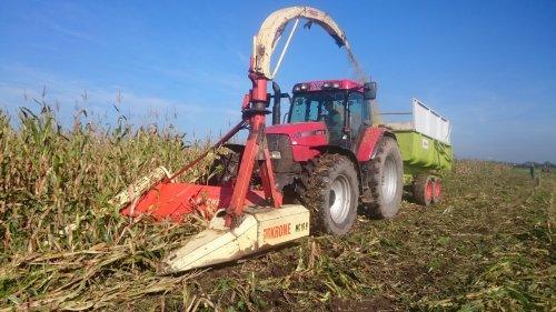 Foto van een Krone MC16B, druk bezig met Maïs hakselen. Platgewaaide maïs. Veel schade van de junistorm ...