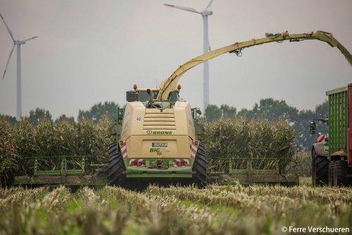 Lohnunternehmen Janssen KG uit Rhede met hun Krone Big X 1100 volop in de mais oogst! (2015). Geplaatst door FerreV op 01-11-2015 om 18:10:10, op TractorFan.nl - de nummer 1 tractor foto website.