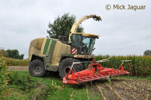 Krone BigX 1000 met Kemper 390plus voorzetstuk, bezig met mais hakselen. Loonwerken Patrick Van Holderbeke uit Zomergem (B)  Filmpje? -> http://www.tractorfan.nl/movie/42914/