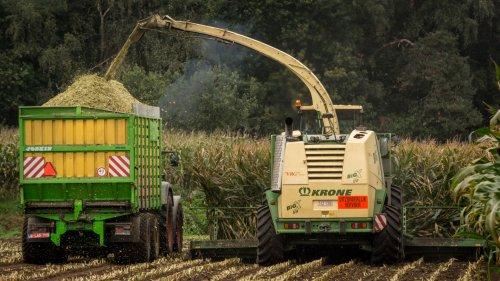 Loonbedrijf VRG aan het hakselen. Geplaatst door Bengo op 12-11-2015 om 14:28:00, op TractorFan.nl - de nummer 1 tractor foto website.