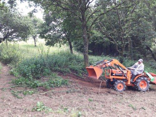 Foto van een Kubota ZB7001. Geplaatst door Paulus H op 08-03-2019 om 04:10:46, op TractorFan.nl - de nummer 1 tractor foto website.