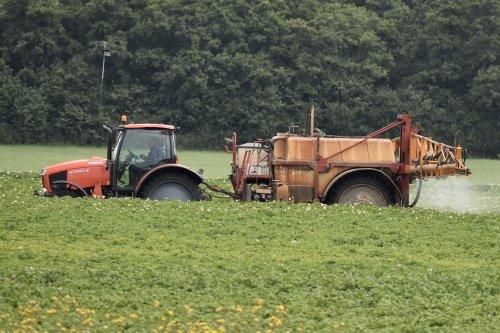 Foto van een Kubota M135GX bezig met spuitje doen in Flevoland. Geplaatst door warmerbros op 23-07-2021 om 22:59:20, op TractorFan.nl - de nummer 1 tractor foto website.