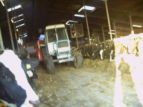 Foto van onze Landini 7550, bezig met voeren.. Geplaatst door daan knol op 31-01-2009 om 10:13:16, met 5 reacties.