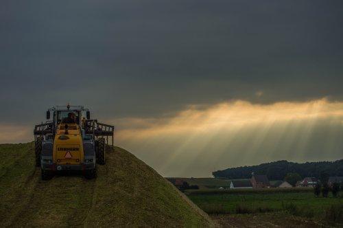 De Liebherr van Agroservice Partoens op de biogaskuil nabij Opitter(B)  Medemogelijk gemaakt door mij, [url=https://www.facebook.com/Swinnenpictures][b]SwinnenPictures[/b][/url]