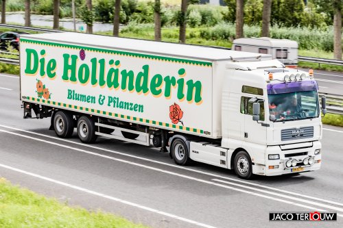 Foto van een MAN TGA, opgebouwd voor koeltransport.. Geplaatst door xrayjaco op 30-07-2020 om 11:23:01, op TractorFan.nl - de nummer 1 tractor foto website.