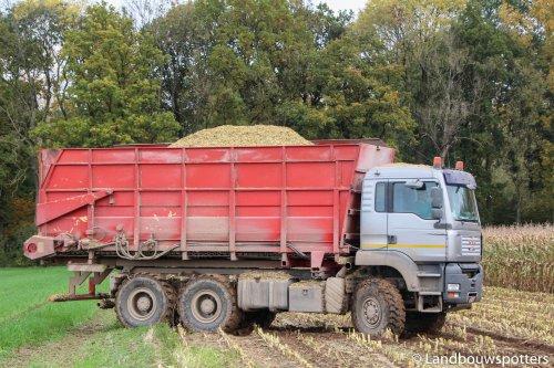 Foto van een M.A.N TGA, bezig met maïs hakselen. Clément uit Montroeul-Au-Bois. Geplaatst door tractorfreek op 27-10-2015 om 19:42:13, op TractorFan.nl - de nummer 1 tractor foto website.