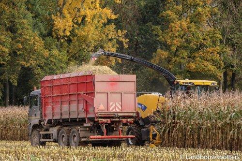 Foto van een M.A.N TGA, bezig met maïs hakselen. Clément uit Montroeul-Au-Bois. Geplaatst door tractorfreek op 27-10-2015 om 19:42:23, op TractorFan.nl - de nummer 1 tractor foto website.
