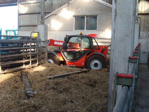 Manitou Maniscopic aan het uitmesten van een potstal. Geplaatst door janrus op 27-05-2008 om 15:44:26, op TractorFan.nl - de nummer 1 tractor foto website.