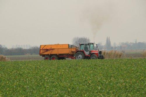 Foto van een Massey Ferguson 675. Geplaatst door alfredo op 27-11-2016 om 11:28:27, op TractorFan.nl - de nummer 1 tractor foto website.