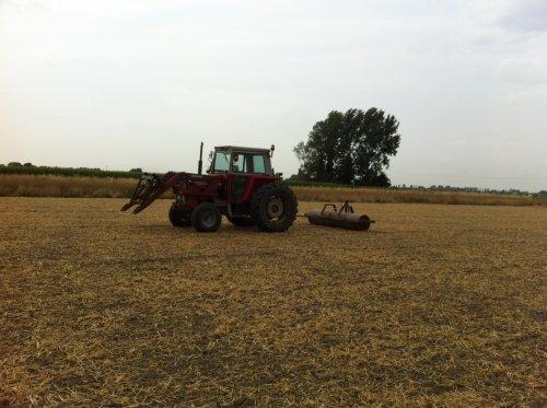Foto van een Massey Ferguson 575 aan het rollen .. Geplaatst door noordhof op 21-07-2017 om 21:03:14, op TractorFan.nl - de nummer 1 tractor foto website.