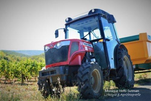 Massey Ferguson 3640 van Lifestyle & Agrifotografie
