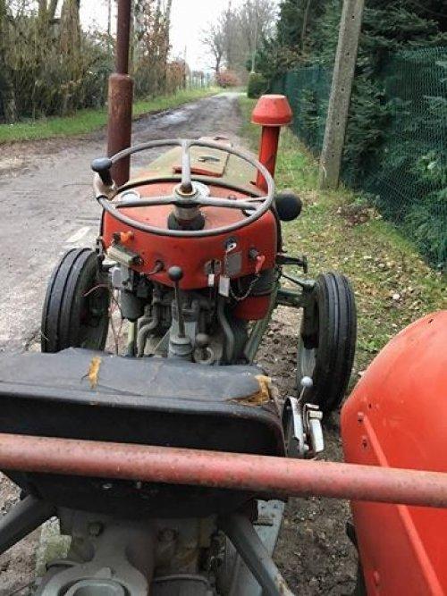 Massey Ferguson 35 X Multipower. schuurvondst. Geplaatst door fendtford op 14-01-2018 om 13:11:17, op TractorFan.nl - de nummer 1 tractor foto website.