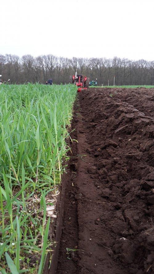 Foto van een Massey Ferguson 35. Ploegwedstrijd 14 april Grebbetrekkers in Rhenen. Geplaatst door Wilco vd Kuilen op 15-04-2018 om 23:05:02, op TractorFan.nl - de nummer 1 tractor foto website.