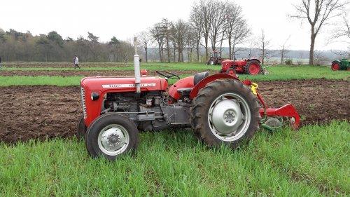Foto van een Massey Ferguson 35. Ploegwedstrijd 14 april Grebbetrekkers in Rhenen. Geplaatst door Wilco vd Kuilen op 15-04-2018 om 23:05:06, op TractorFan.nl - de nummer 1 tractor foto website.
