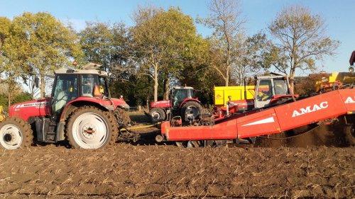 Foto van een Massey Ferguson Meerdere. Geplaatst door manus op 09-11-2018 om 13:53:53, op TractorFan.nl - de nummer 1 tractor foto website.
