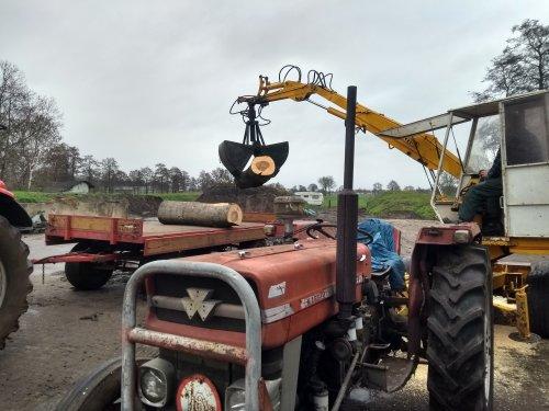 Foto van een Massey Ferguson 135 met     ICAR BAZZOLI kraan bezig met het opladen van hout.. Geplaatst door Tractor TV op 05-01-2019 om 13:34:09, op TractorFan.nl - de nummer 1 tractor foto website.