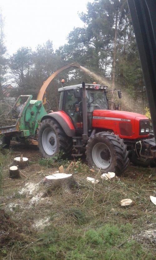 Foto van een Massey Ferguson 8240 aan het hout hakselen. Geplaatst door Fred6490 op 16-03-2019 om 18:16:24, met 2 reacties.