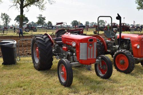 Massey Ferguson 65 van jordi 1455