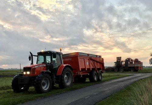 Afgelopen weekend de bieten gerooid 😀. Geplaatst door mf-6265 op 09-10-2019 om 18:38:27, op TractorFan.nl - de nummer 1 tractor foto website.
