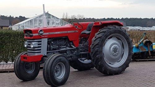 Massey Ferguson 185 van Bauwz