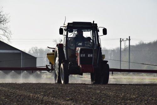 Foto van een Massey Ferguson 355 tegen vuil spuiten in Noordwijkerhout. Geplaatst door warmerbros op 08-04-2020 om 20:51:08, met 5 reacties.