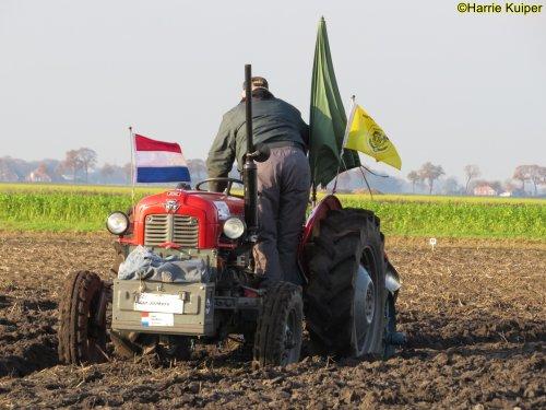 Foto van een Massey Ferguson 35 , nationale ploegwedstrijd 22/11/2019 in Stadskanaal. Geplaatst door oldtimergek op 19-05-2020 om 12:49:25, op TractorFan.nl - de nummer 1 tractor foto website.