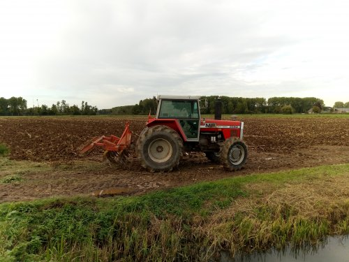 Foto van een Massey Ferguson 2680 met Peecon cultivator.. Geplaatst door MF 2725 op 30-09-2020 om 05:54:53, met 15 reacties.