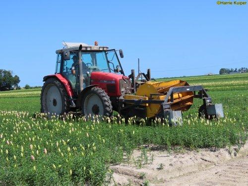 Foto van een Massey Ferguson 6255 aan het bloemen koppen op 17 Juli 2021 in de NOP.. Geplaatst door oldtimergek op 22-07-2021 om 00:31:49, op TractorFan.nl - de nummer 1 tractor foto website.