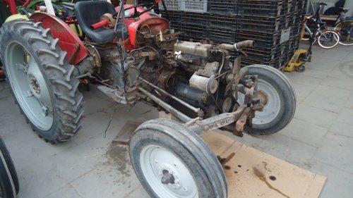 Foto van een Massey Ferguson 35 X bezig met uit mekaar liggen.. Geplaatst door sprokkel hout op 19-11-2011 om 17:58:57, op TractorFan.nl - de nummer 1 tractor foto website.