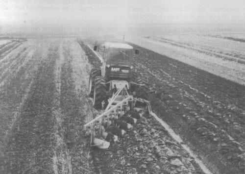 Massey Ferguson 1200 van hanomagfarm