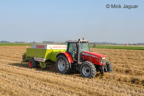 Massey Ferguson 5465 met Claas Quadrant 1200, bezig met stro persen. Loonwerken Bonte uit Sint-Laureins (B).