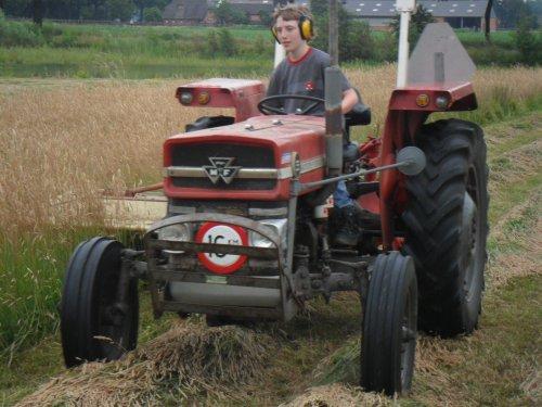 Foto van een Massey Ferguson 135, bezig met gras maaien.. Geplaatst door valyMF op 05-07-2013 om 07:56:02, met 3 reacties.