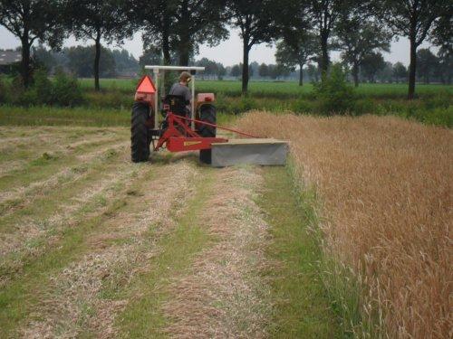 Foto van een Massey Ferguson 135, bezig met gras maaien.. Geplaatst door valyMF op 05-07-2013 om 07:58:42, op TractorFan.nl - de nummer 1 tractor foto website.