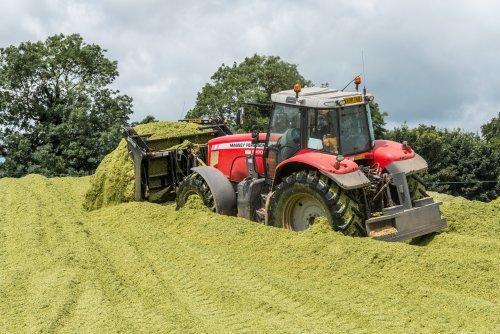 Foto van een Massey Ferguson 6490 Dyna-6 , ergens in Engeland. Geplaatst door Bengo op 27-08-2016 om 10:54:42, op TractorFan.nl - de nummer 1 tractor foto website.