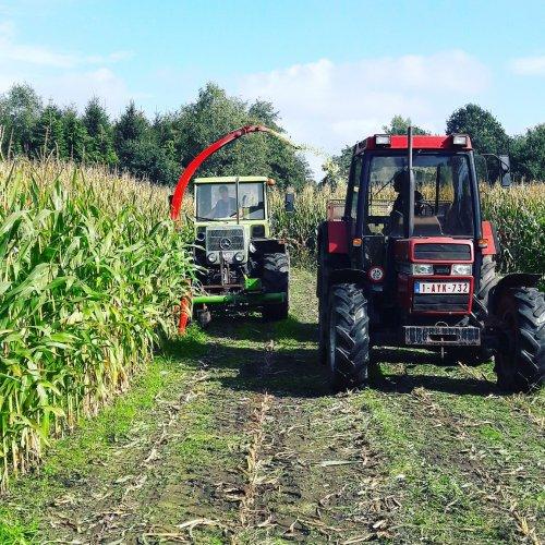 Foto van een MB Trac 800 Vandaag de maïs ook af gedaan MB trac met Hagedorn HM 69. Geplaatst door jan_case745 op 23-09-2017 om 20:44:42, op TractorFan.nl - de nummer 1 tractor foto website.