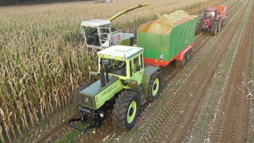 18 oktober 2017 - Maishakselen te Nordhorn. Op de foto de MB-Trac 1600 trekker met Hawe silagewagen, de Claas Jaguar 690 hakselaar en de Case IH 1455XL trekker met Schuitemaker silagewagen.