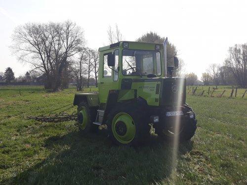 Foto van een MB Trac Turbo 900. aan het weide slepen vandaag, veel plezier gehad. Geplaatst door deutz d25s op 30-03-2019 om 18:08:58, op TractorFan.nl - de nummer 1 tractor foto website.