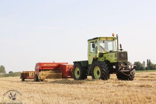 Elk jaar vinden we voor onze zomer en najaar's specials op de oude doos wel een MB-Trac. Deze legendarische tractoren zijn steeds minder en minder te vinden, maar wie zoekt, die vindt!  Ze zijn nog niet uitgestorven en dat bewijst landbouwer Melis uit Leisele (B). Bijna het volledige trekkerpark van deze akkerbouwer bestaat uit MB-Trac tractoren.  Deze MB Trac 1000 perst in de zomermaanden kleine pakjes stro met een New Holland 387 en een balenverzamelaar achteraan.   De liefhebbers van MB trac en ander ouder materiaal, kunnen steeds terecht op http://www.deoudedoos.be