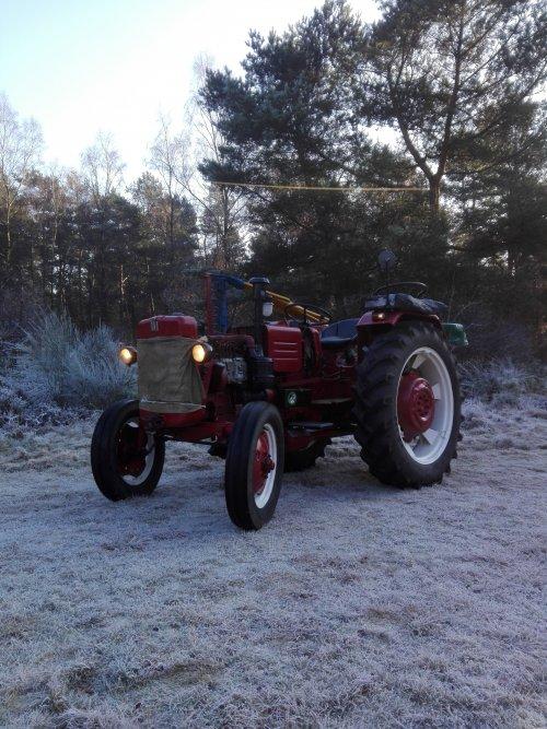 Foto van een Mc-Cormick D 439. Geplaatst door roy-tijssen op 17-01-2017 om 11:38:12, op TractorFan.nl - de nummer 1 tractor foto website.