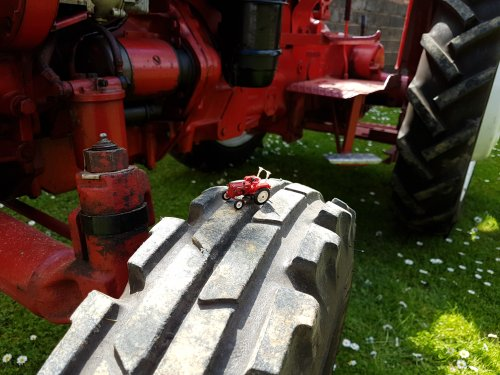 Photo of a McCormick D-326 (1:87) on the wheel of a real McCormick D-326. Geplaatst door otto-normalverbraucher op 14-05-2017 om 13:20:06, op TractorFan.nl - de nummer 1 tractor foto website.