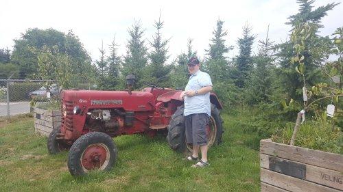 Foto van een Mc-Cormick Sjomp. Geplaatst door steyrlanzboy op 09-07-2017 om 15:22:52, op TractorFan.nl - de nummer 1 tractor foto website.