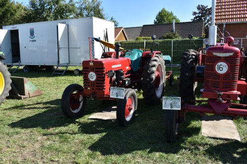 Foto van een Mc-Cormick D 439. Geplaatst door jordi 1455 op 11-10-2019 om 19:56:24, op TractorFan.nl - de nummer 1 tractor foto website.