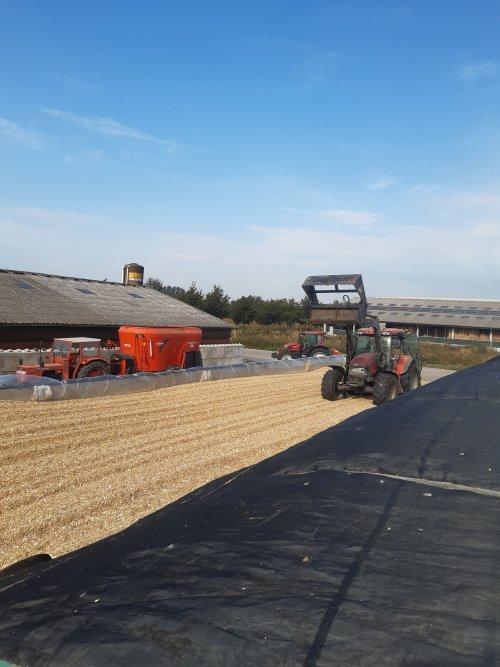 Familiefoto. Mais ziet er droger uit dan hij is plant redelijk verdroogd kolf net rijp genoeg.. Geplaatst door BEboer op 16-09-2020 om 16:09:14, op TractorFan.nl - de nummer 1 tractor foto website.