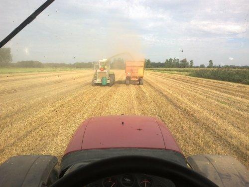 Foto van een Mc-Cormick MTX 145, bezig met gras hakselen.. Geplaatst door mennointer op 29-08-2011 om 21:27:35, met 3 reacties.