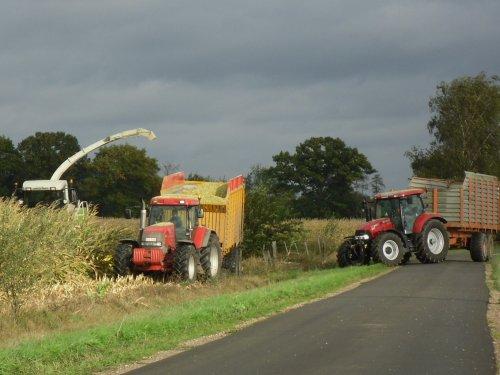 Foto van een Mc-Cormick MTX 200, bezig met maïs hakselen. Loonbedrijf Van Dijck uit Peer. Geplaatst door fend1984 op 13-11-2012 om 00:18:27, op TractorFan.nl - de nummer 1 tractor foto website.