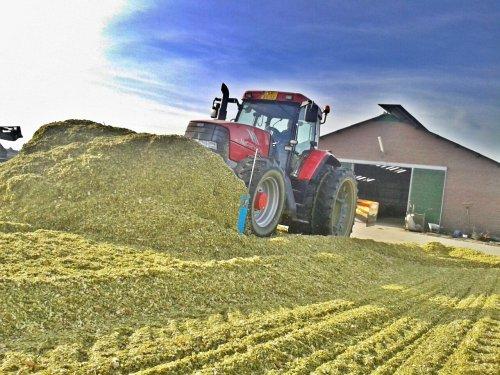 Foto van een Mc-Cormick MTX 155, bezig met maïs inkuilen.. Geplaatst door casefordhenry op 02-11-2013 om 16:36:00, met 4 reacties.