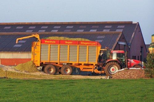 Foto van een Mc-Cormick MTX 140, bezig met maïs inkuilen. Sprangers aan de gang bij een maisbult aan de Meerseweg in oktober 2005.