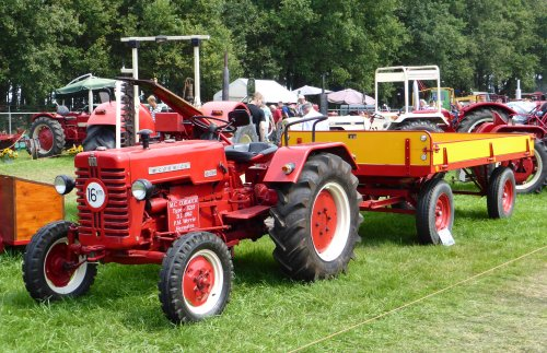 Foto van een Mc-Cormick D 214 met Miedema landbouwwagen, bezig met poseren tijdens het Internationaal Historisch Festival 2014 te Panningen.  Meer foto's op: https://www.facebook.com/media/set/?set=a.1479695012274875.1073741837.1424820294429014&type=1