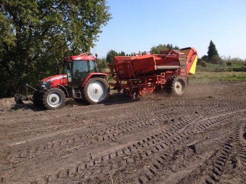 Foto van een Mc-Cormick CX 95, bezig met aardappels rooien met een grimme hls 750.. Geplaatst door ih1455 op 22-09-2014 om 22:01:46, op TractorFan.nl - de nummer 1 tractor foto website.