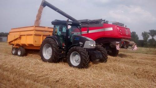 Foto van een Mc-Cormick MC 135, bezig met maaidorsen.. Geplaatst door wouter-de-raeve op 18-10-2014 om 18:35:15, op TractorFan.nl - de nummer 1 tractor foto website.